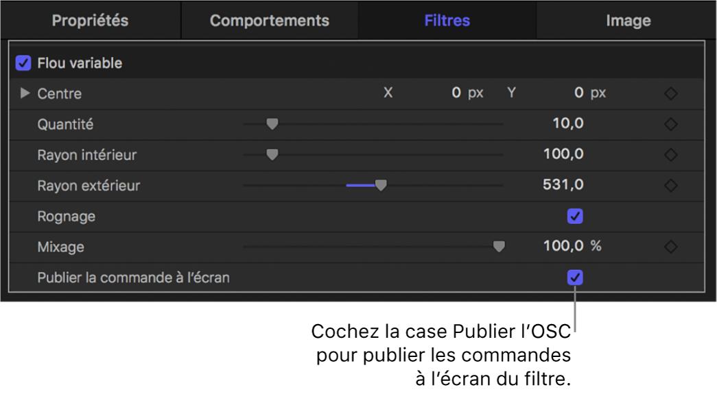 Inspecteur de filtres affichant la case «Publier les commandes à l'écran»
