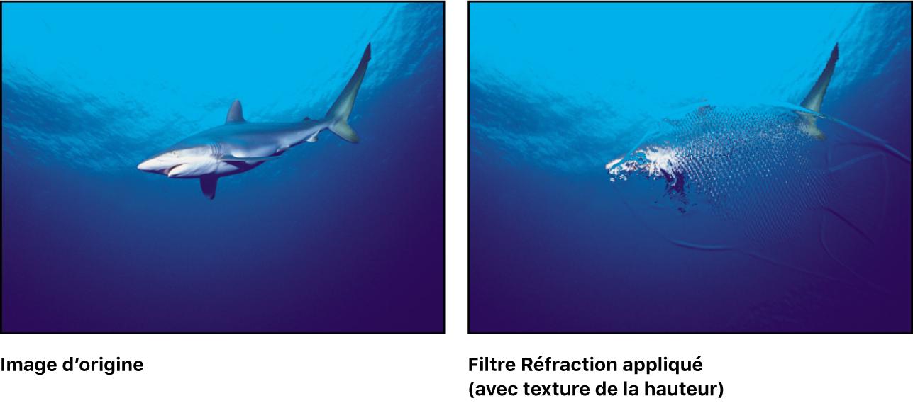 Canevas affichant l'effet du filtre Réfraction