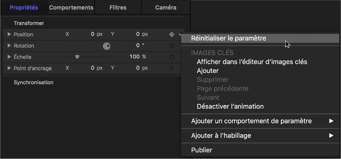 Option Réinitialiser le paramètre du menu Animation