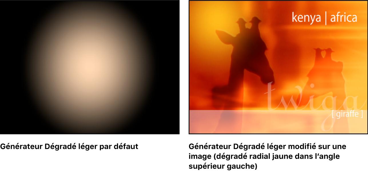 Fenêtre du canevas affichant le générateur Dégradé léger, seul et combiné avec une autre image.