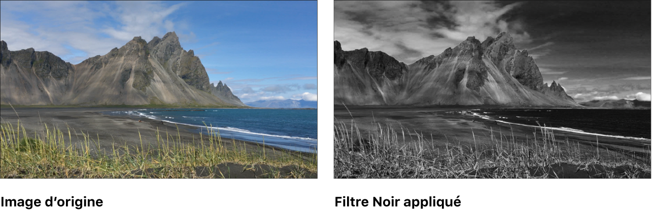 Canevas affichant l'effet du filtre Noir