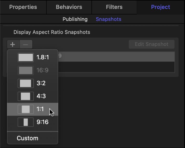 「プロジェクト」インスペクタの「スナップショット」パネル。新しいディスプレイアスペクト比のオプションが表示されています