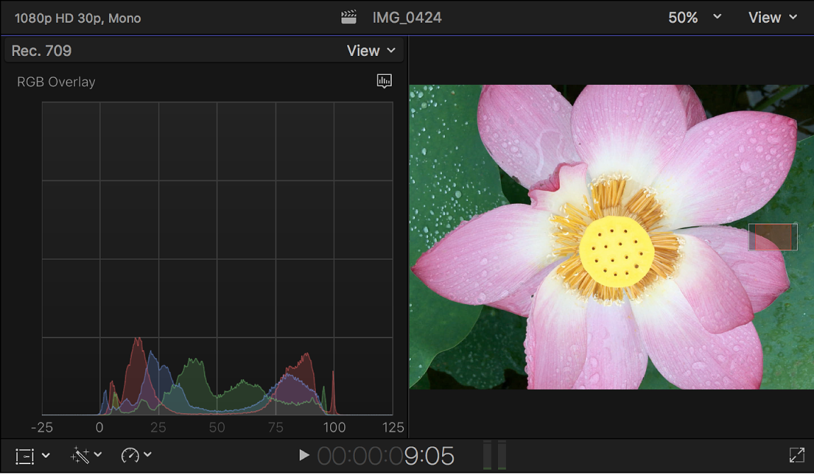 The RGB Overlay histogram shown to the left of the viewer