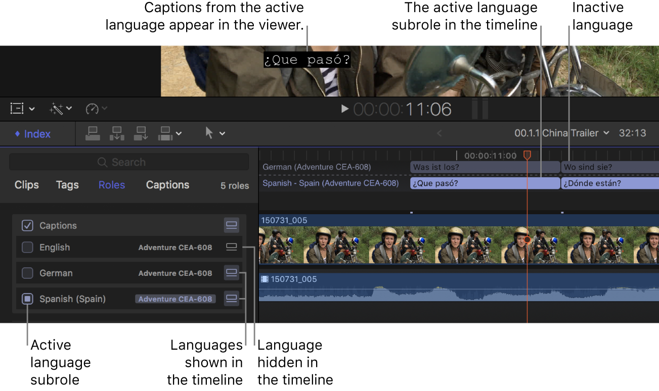 The viewer, timeline, and timeline index, showing the active caption language as well as inactive and hidden languages