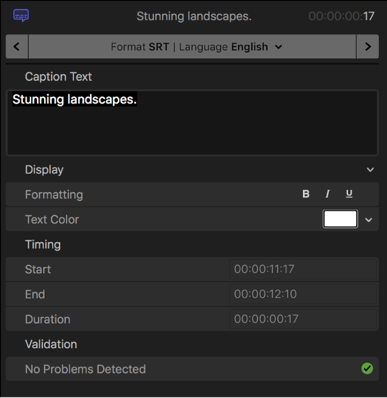 The Caption inspector showing caption text formatting controls for the SRT format
