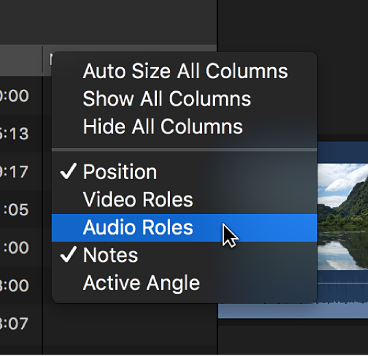 A shortcut menu for customizing the display of columns in the timeline index