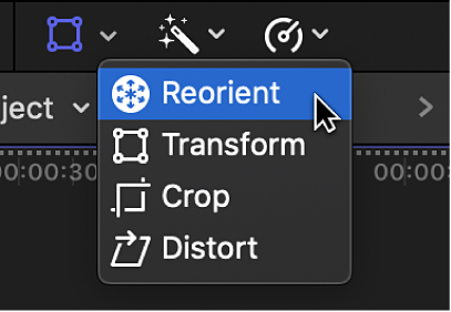 The Reorient menu item for accessing the Reorient control