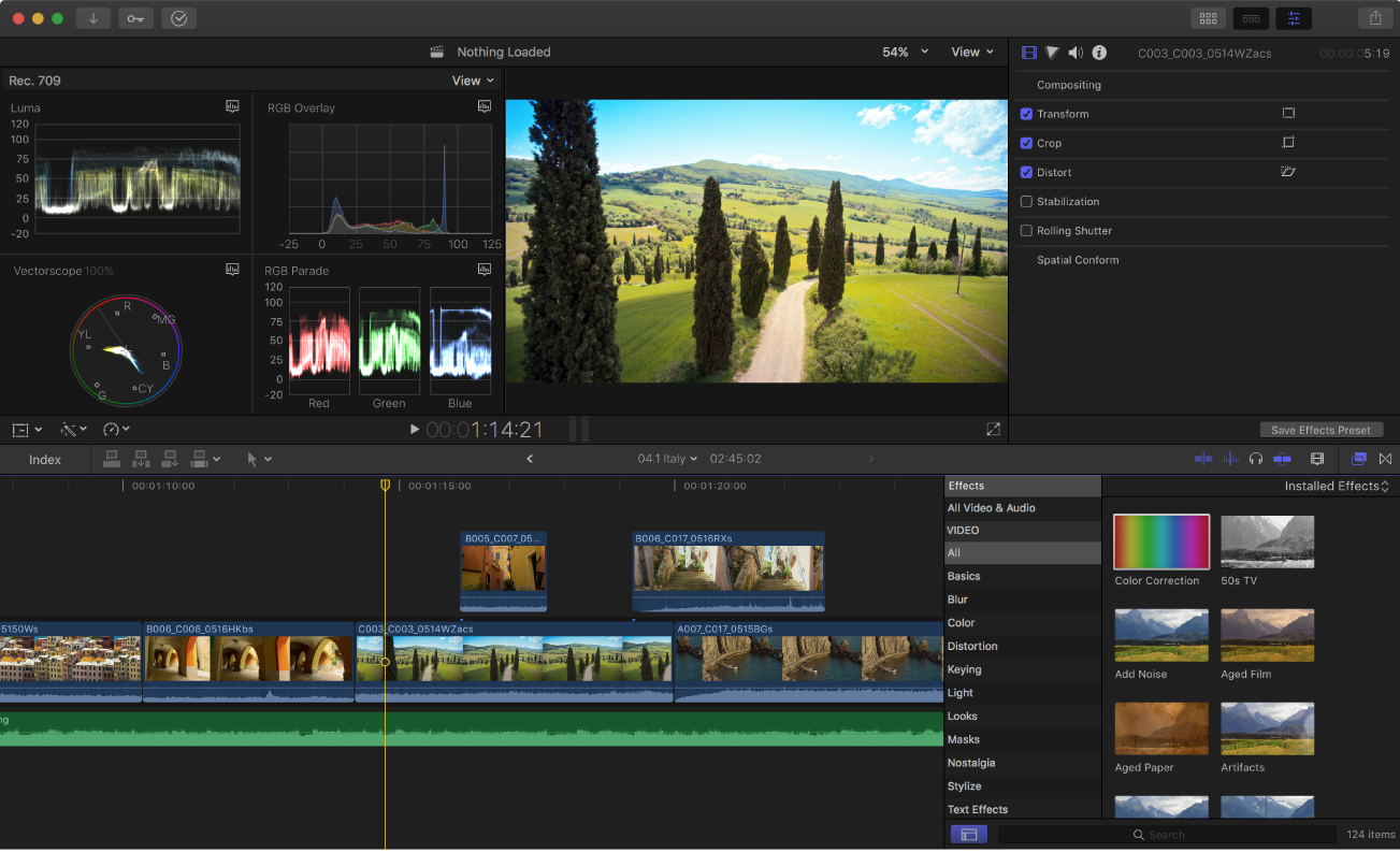 The Final Cut Pro main window showing the video scopes display, the viewer, the inspector, the timeline, and the Effects browser