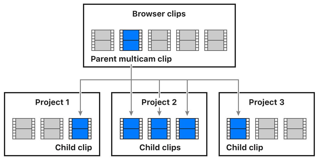 Un diagrama que muestra la relación entre un clip Multicam principal del explorador y sus clips Multicam secundarios de tres proyectos diferentes