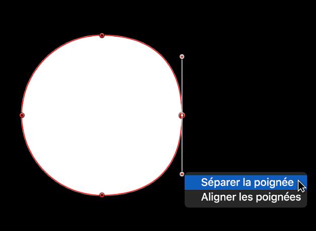 Visualiseur affichant le menu contextuel d'un point d'une poignée de tangente, avec les options Séparer la poignée et Aligner les poignées