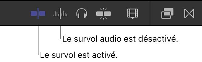 Boutons Survol et Audio lors du survol