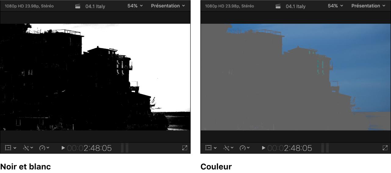 Plans côte à côte du visualiseur montrant l'image de canal alpha en noir et blanc à gauche et les zones visibles de l'image masquée en couleur à droite