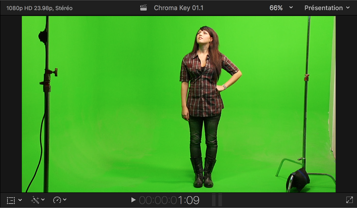 Visualiseur affichant la vidéo de premier plan à incruster en chrominance avec l'image d'une personne se tenant devant un fond vert