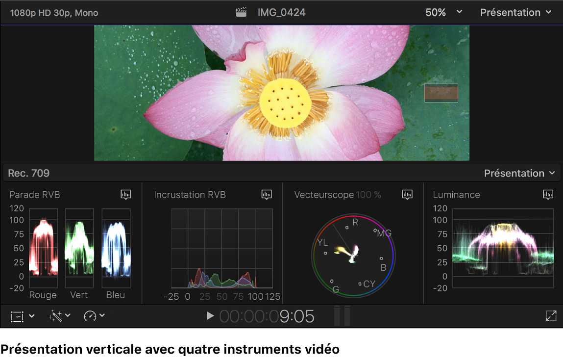 Histogramme Parade RVB, histogramme Incrustation RVB, vecteurscope et oscilloscope de luminance sous le visualiseur
