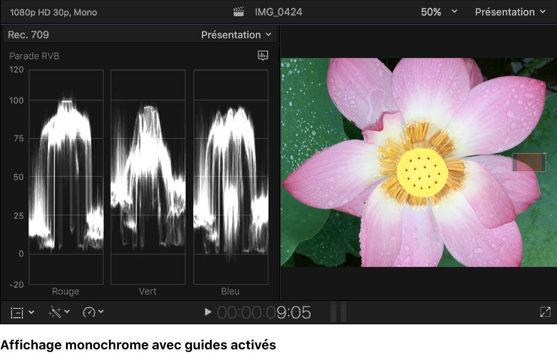 Histogramme Parade RVB monochrome avec guides présenté à gauche du visualiseur