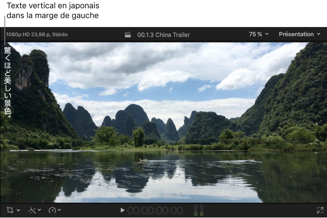 Visualiseur affichant du texte de sous-titre vertical en japonais