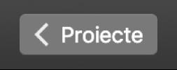 Butonul de revenire Proiecte din bara de instrumente