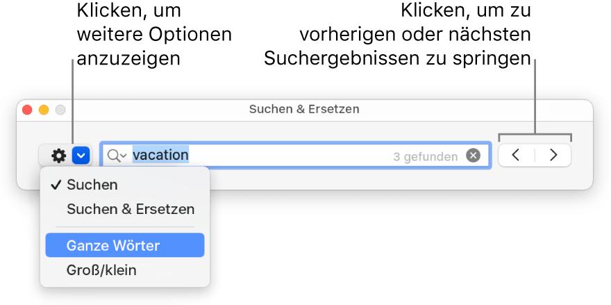 """Das Fenster """"Suchen & Ersetzen"""" mit Beschriftungen für die Taste, mit der Optionen zum Suchen, Suchen und Ersetzen, Suchen ganzer Wörter und Suchen unter Berücksichtigung der Groß-/Kleinschreibung eingeblendet werden können. Mit den Pfeilen auf der rechten Seite kann zu den vorherigen bzw. nächsten Suchergebnissen gesprungen werden"""