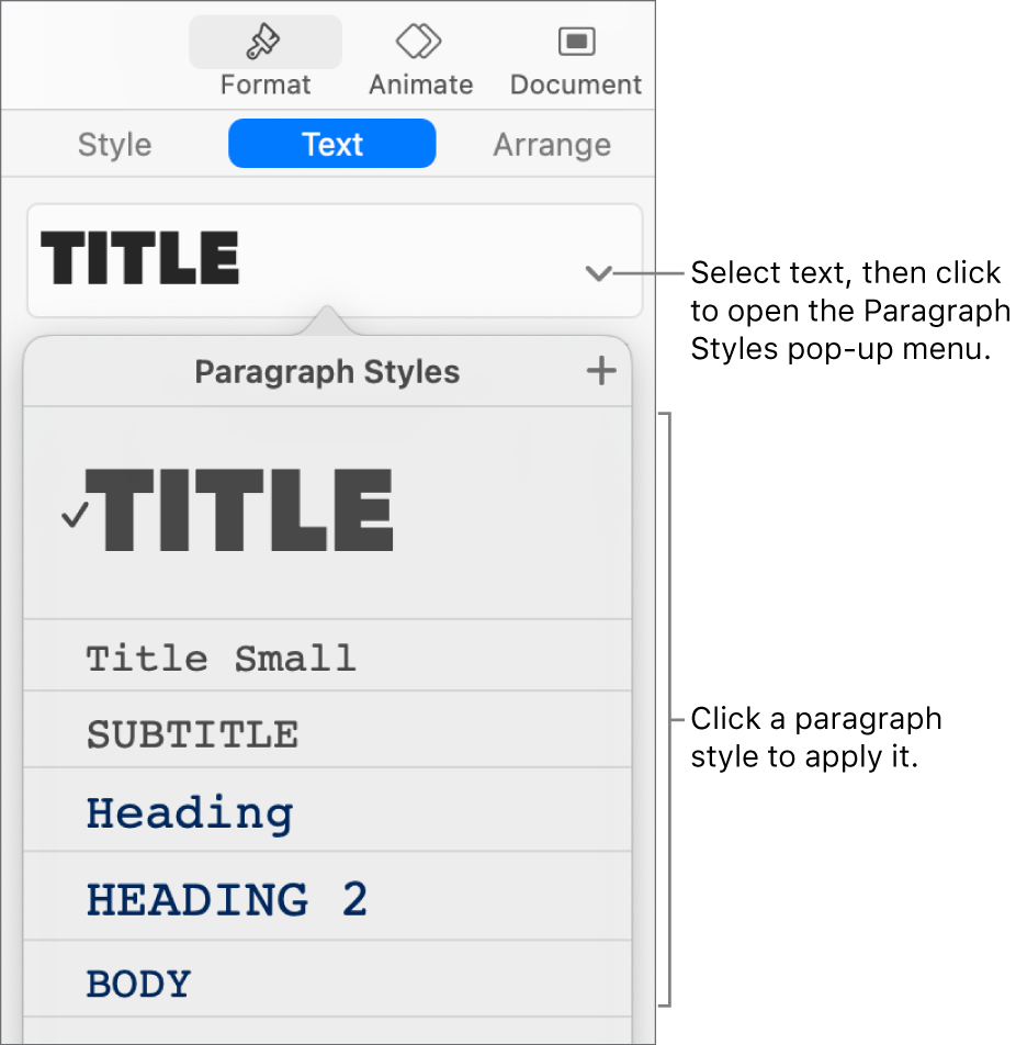 The Paragraph Styles menu with a checkmark next to the selected style.