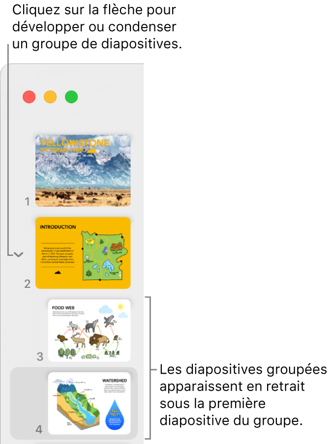 Le navigateur de diapositives qui affiche des diapositives en retrait.