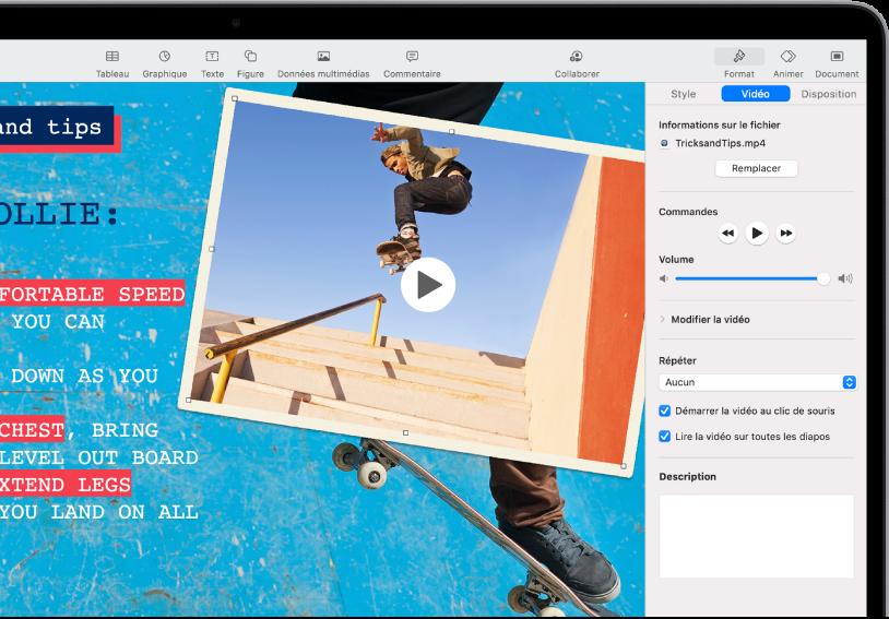 Les commandes de formatage situées à droite de l'écran permettant de modifier la taille et l'aspect de la vidéo sélectionnée. Les boutons Style, Vidéo et Disposition sont disposés en haut des commandes de formatage.