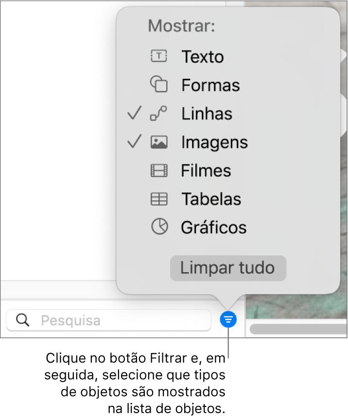 O menu pop-up Filtro aberto, com uma lista dos tipos de objetos que a lista pode incluir (texto, formas, linhas, imagens, filmes, tabelas e gráficos).