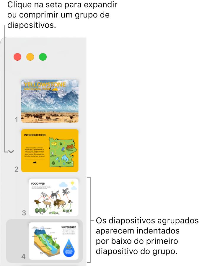 O navegador de diapositivos com diapositivos indentados.