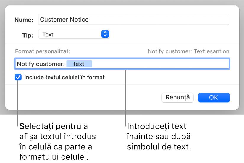 Format de text personalizat de celulă.