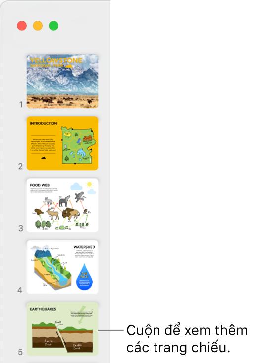 Trình điều hướng trang chiếu mô tả năm trang chiếu theo chiều dọc theo thứ tự tuần tự, với tùy chọn cuộn xuống để xem các trang chiếu khác.