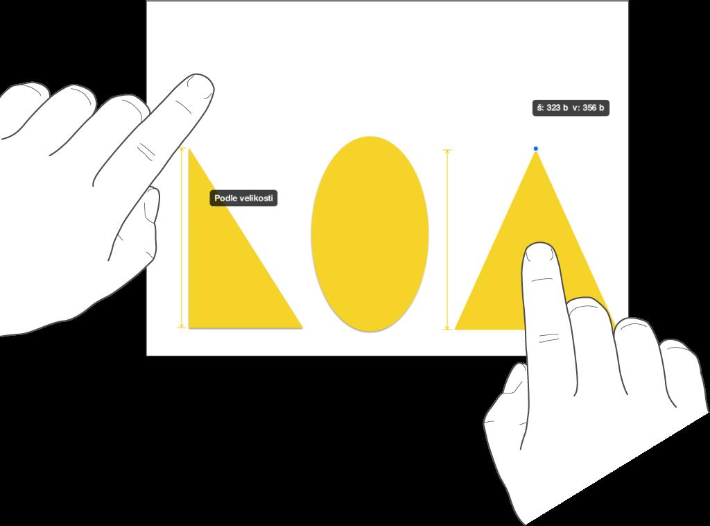Jeden prst se nachází nad tvarem, druhý prst drží objekt ana obrazovce je zobrazen výraz Podle velikosti