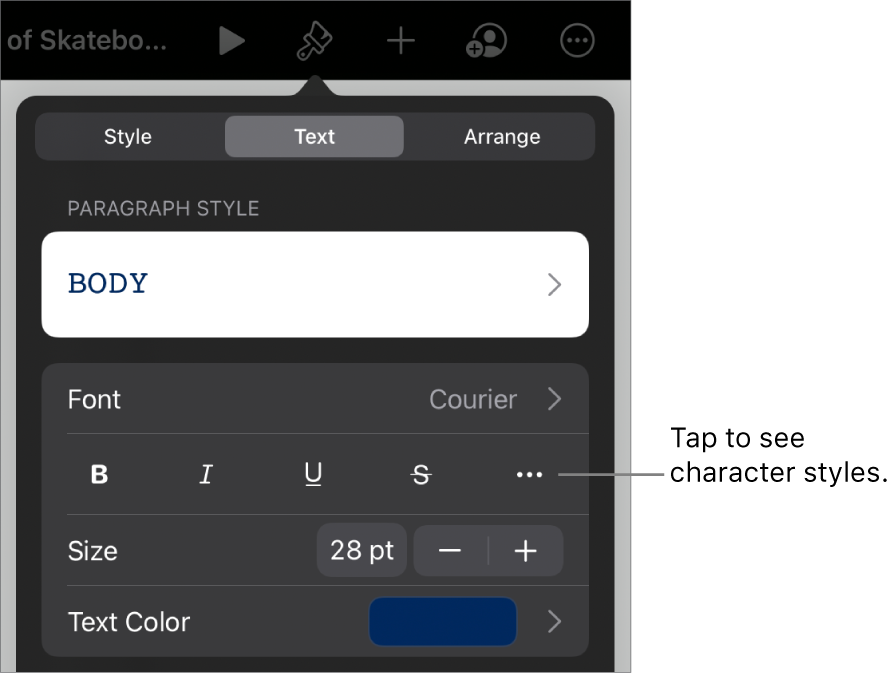 The Format controls with paragraph styles at the top, then Font controls. Below Font are the Bold, Italic, Underline, Strikethrough, and More Text Options buttons.