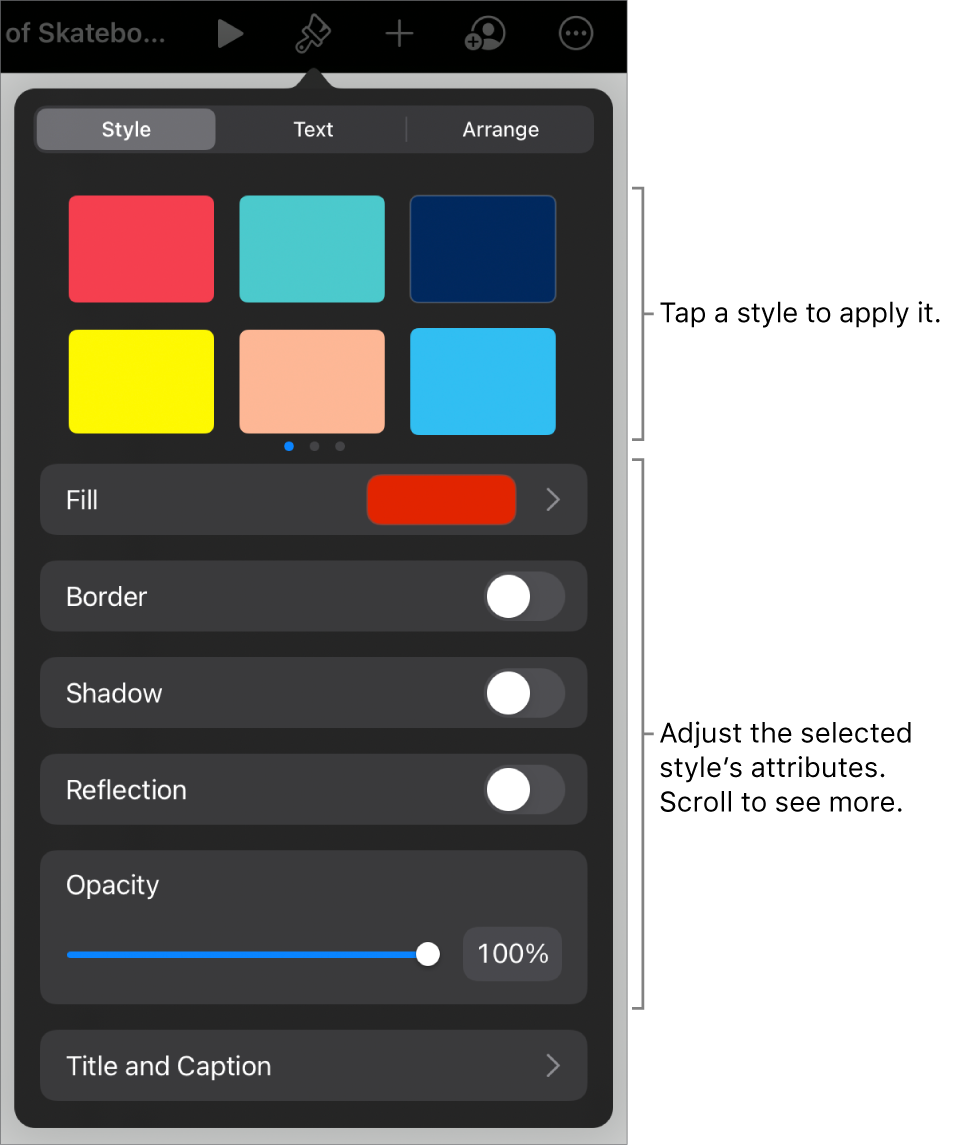 The Style tab of the Format menu with object styles at the top and controls below them to change the border, shadow, reflection, and opacity.