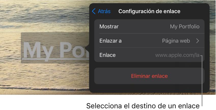 """Los controles de """"Configuración de enlace"""" con los campos Mostrar, Enlazar a (""""Página web"""" está seleccionado) y Enlace. En la parte inferior está la opción """"Eliminar enlace""""."""