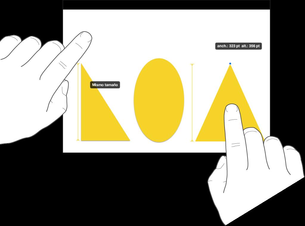 """Un dedo justo encima de una figura y otro dedo manteniendo pulsado un objeto con las palabras """"Mismo tamaño"""" en la pantalla."""