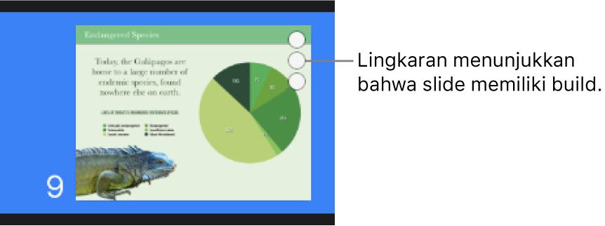 Slide dengan tiga lingkaran di pojok kanan atas menunjukkan bahwa slide memiliki build.