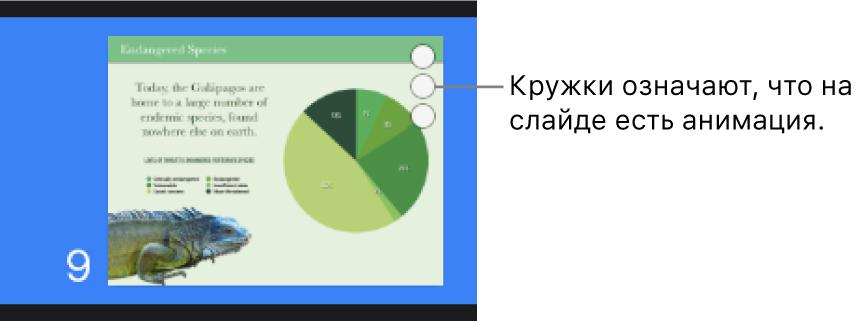 Слайд стремя кружками вправом верхнем углу, обозначающими наличие анимации.