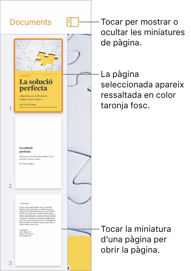 """Vista """"Miniatures de pàgina"""" a la part esquerra de la pantalla amb una pàgina seleccionada. El botó """"Opcions de visualització"""" a sobre de les miniatures."""