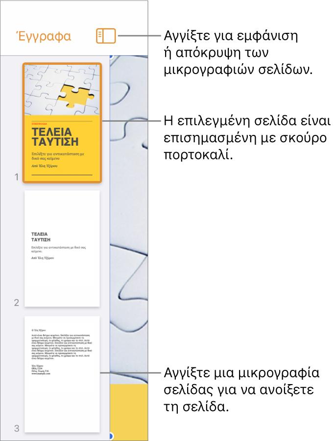 Προβολή μικρογραφιών σελίδων στην αριστερή πλευρά της οθόνης με μία επιλεγμένη σελίδα. Το κουμπί «Επιλογές προβολής» βρίσκεται πάνω από τις μικρογραφίες.
