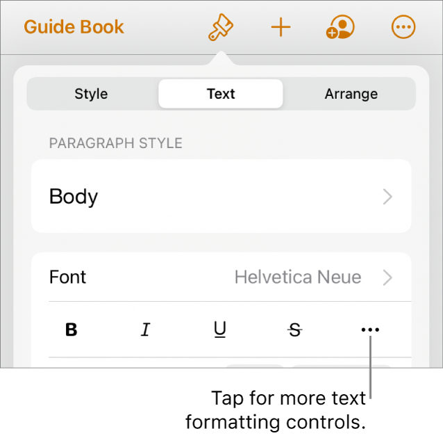 The Text tab of the Format controls, with a callout to the More Text Options button.