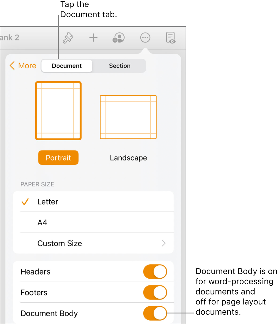 The Document format controls with Document Body turned on near the bottom of the screen.