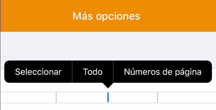 """Tres campos de encabezado con el punto de inserción en el centro uno y un menú desplegable que muestra """"Números de página""""."""