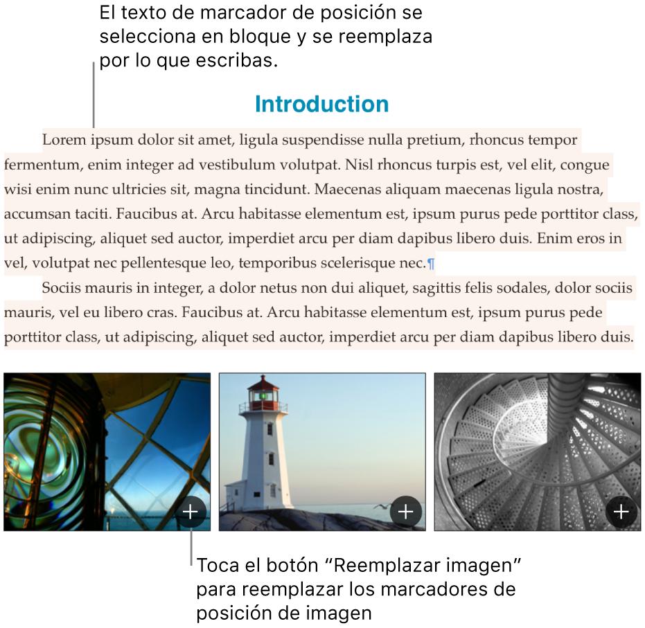 Texto e imágenes de marcador de posición.