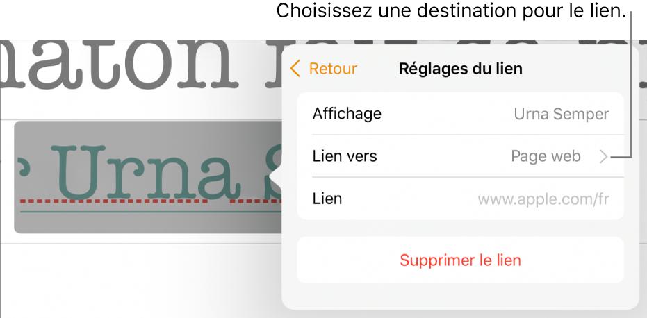 La fenêtre surgissante «Réglages du lien» avec les champs Affichage, Lien vers (défini sur «Page web») et Lien. Le bouton «Supprimer le lien» se trouve au bas des commandes.