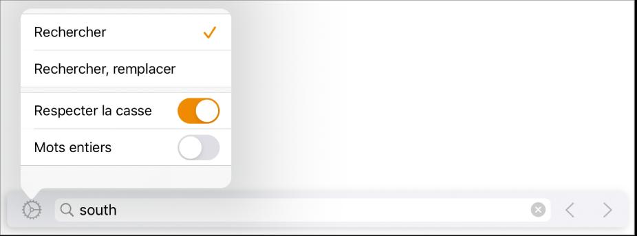 Le menu d'options de recherche avec Rechercher, Rechercher et remplacer, Respecter la casse et Mots entiers.