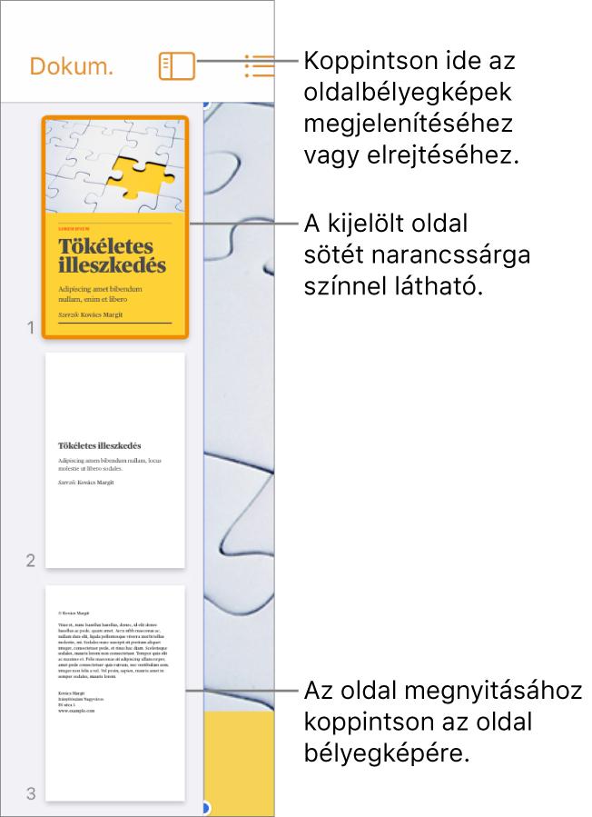 Az Oldalbélyegképek nézete a képernyő bal oldalán, egy kijelölt oldallal. A Nézetbeállítások gomb a bélyegképek felett található.