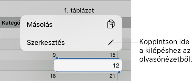 Egy kijelölt táblázatcella, amely fölött a Másolás és Szerkesztés gombokat tartalmazó menü látható.