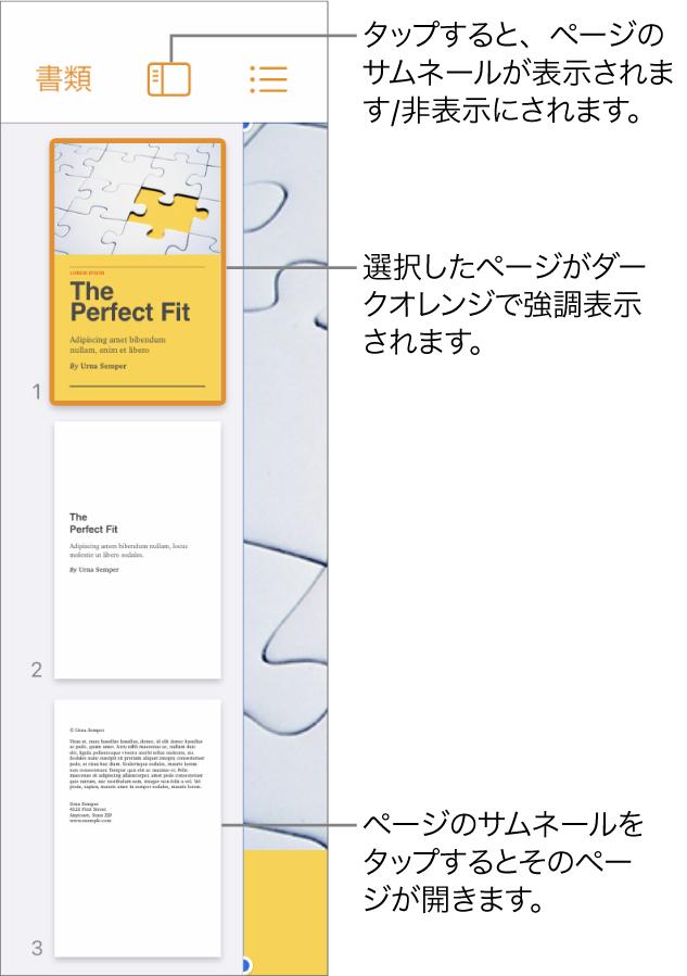 画面左側にある、ページのサムネール表示。ページが1つ選択されています。サムネールの上に「表示オプション」ボタンがあります。