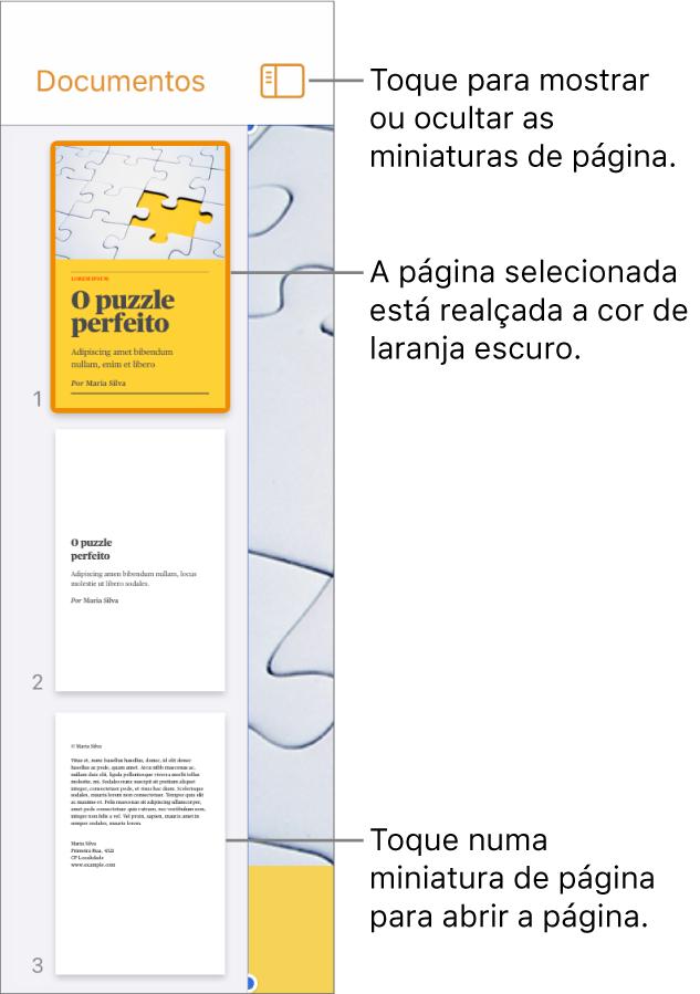 A vista de miniaturas das páginas no lado esquerdo do ecrã com uma página selecionada. O botão Opções de visualização está por cima das miniaturas.