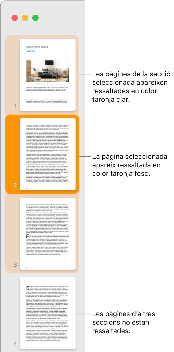 """La barra lateral """"Vista de miniatures"""" amb la pàgina seleccionada ressaltada en taronja fosc i totes les pàgines de la secció seleccionada ressaltades en taronja clar."""