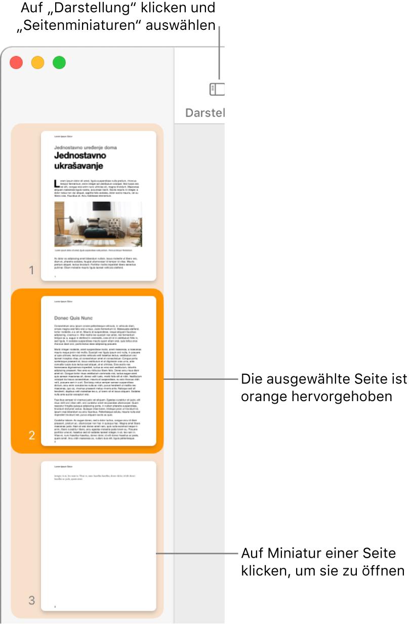 """Die Seitenleiste links im Fenster """"Pages"""" mit der geöffneten Miniaturdarstellung der Seiten und der dunkelorange hervorgehobenen Miniatur der aktuell ausgewählten Seite."""